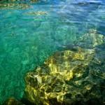 Immersione a Porto San Nicolò - Riva del Garda - 22.1.11