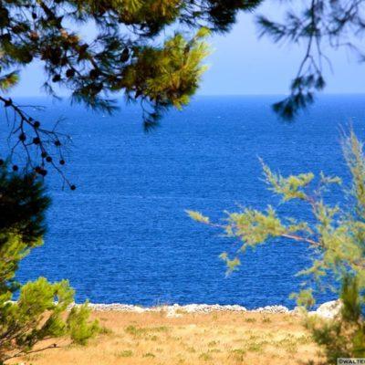 Foto album: La Fraula Puglia
