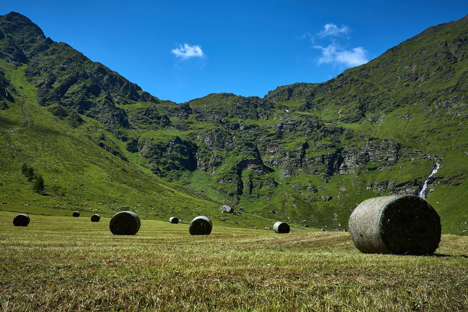 Nuove foto: valle d'Altafossa