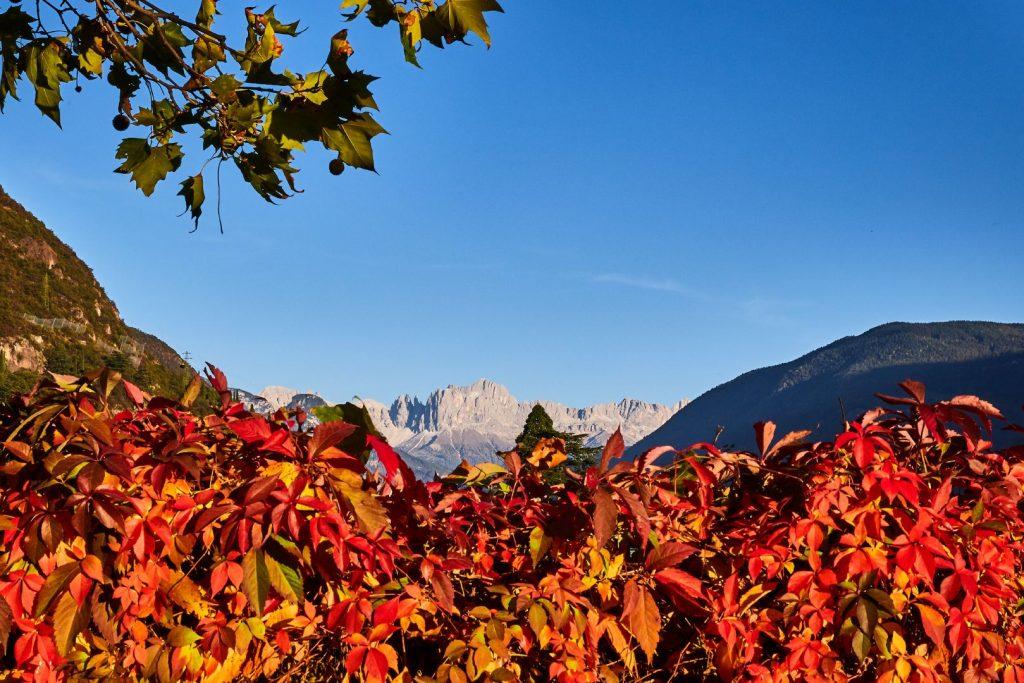 Nuovo foto album: Tramonto autunnale a Bolzano
