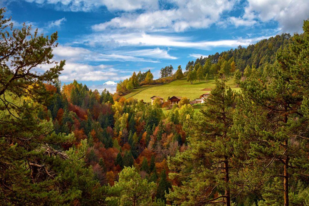 Nuovo album foto: passeggiata sull'altopiano del Salto in autunno