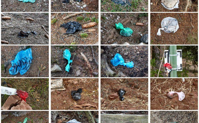 In montagna tra sacchetti con deiezioni canine e rifiuti di vario genere